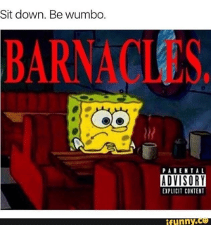 Sit down: Sit down. Be wumbo  BARNACLES  PARENTAL  ADVISORY  EXPLICIT CONTENT  funny.Ce Sit down