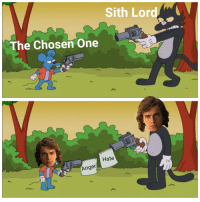 Memes, Sith, and Rough: Sith Lord  The Chosen One  Hate  Anger