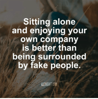 Being alone: Sitting alone  and enjoying your  own company  is better than  being surrounded  by fake people.  ALEXKRAFTCOM
