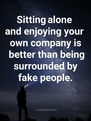 Being Alone, Fake, and Memes: Sitting alone  and enjoying your  own company iS  better than being  surrounded by  fake people