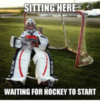 Hockey, Summer, and Waiting...: SITTING HERE  WAITING FOR HOCKEY TO START Summer Reading