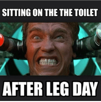 The pain....: SITTING ON THE THE TOILET  AFTER LEG DAY The pain....