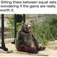 Memes, Squat, and 🤖: Sitting there between squat sets  wondering if the gains are really  worth it.  (ti) Feels @powerliftinglol @powerliftingmotivation