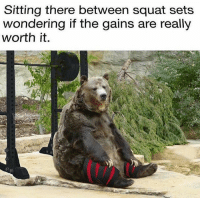 Memes, Squat, and 🤖: Sitting there between squat sets  wondering if the gains are really  worth it. Worth it? 🤔