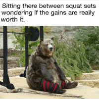 Jay, Squat, and They: Sitting there between squat sets  wondering if the gains are really  worth it.  @jay 35 Are they though?