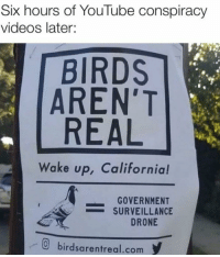 Drone, Videos, and youtube.com: Six hours of YouTube conspiracy  videos later:  BIRDS  AREN'T  REAL  Wake up, Californial!  GOVERNMENT  = SURVEILLANCE  DRONE  birdsarentreal.com I knew it