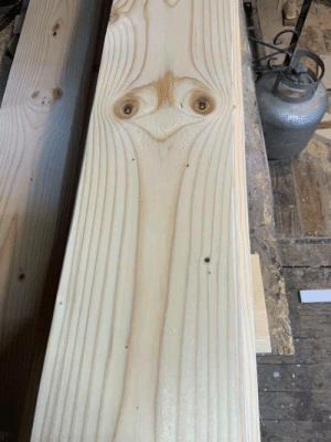"""sixpenceee:   """"Grains on this wood plank resemble an ostrich""""                Source: sixpenceee:   """"Grains on this wood plank resemble an ostrich""""                Source"""