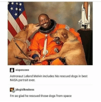 space dogs!!!!!!!! !!! - Max textpost textposts: sixpenceee  Astronaut Leland Melvin includes his rescued dogs in best  NASA portrait ever.  jdogislikeaboss  I'm so glad he rescued those dogs from space space dogs!!!!!!!! !!! - Max textpost textposts