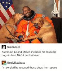 This is the most courageous thing I've ever seen. I think Hollywood should remake The Martian and swap Matty Damón for these space puppers!: sixpenceee  Astronaut Leland Melvin includes his rescued  dogs in best NASA portrait ever.  jdogislikeaboss  I'm so glad he rescued those dogs from space This is the most courageous thing I've ever seen. I think Hollywood should remake The Martian and swap Matty Damón for these space puppers!