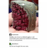 me too smh: sixpenceee  Fordite, also known as Detroit agate, is old  automobile paint which has hardened sufficiently  to be cut and polished  alice3tears  My fat ass thought this was cake. me too smh