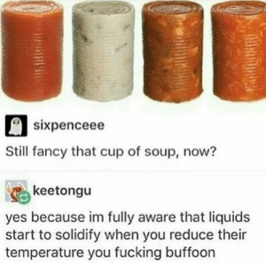 Dank, Fucking, and Memes: sixpenceee  Still fancy that cup of soup, now?  keetongu  yes because im fully aware that liquids  start to solidify when you reduce their  temperature you fucking buffoon Solid Argument by Zombekian MORE MEMES