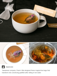Dank, Goldfish, and Transformers: sixpenceee  Taiwanese company Charm Villa designed these magical tea bags that  transform into convincing goldfish after sitting in hot water.