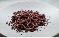 Halloween, Target, and Tumblr: sixpenceee:These raspberry jello worms on a bed of chocolate doughnut crumbs make for a perfect halloween snack!