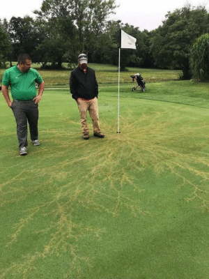 sixpenceee:  What happens when lightning strikes a flag on a golf course. Via: sixpenceee:  What happens when lightning strikes a flag on a golf course. Via