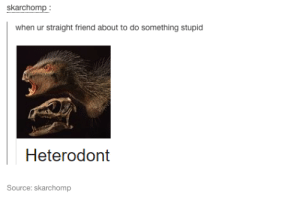 Source, Friend, and Straight: skarchomp  when ur straight friend about to do something stupid  Heterodont  Source: skarchomp Your straight friend