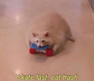 I WAS DIEING: skate fast, eat trash I WAS DIEING