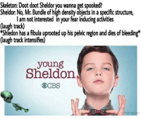 "Dank, Meme, and Http: Skeleton: Doot doot Sheldor you wanna get spooked?  Sheldor: No, Mr. Bundle of high density objects in a specific structure,  l am not interested in your féar inducing activities  (laugh track)  edon has a fibula uprooted up his pelvic region and dies of bleeding*  (laugh track intensifies)  young  Sheldon  OCBS <p>Why Sheldor via /r/dank_meme <a href=""http://ift.tt/2i8MgWE"">http://ift.tt/2i8MgWE</a></p>"