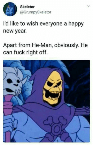 happy new year: Skeletor  @GrumpySkeletor  I'd like to wish everyone a happy  new year.  Apart from He-Man, obviously. He  can fuck right off.