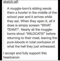 "Bloods, Elf, and Juice: sketch-elf:  A muggle-born's sibling sends  them a howler in the middle of the  school year and it arrives while  they eat. When they open it, all it  does is simply scream ""WHAT  TEAM?"". Nearly all the muggle-  borns shout ""WILDCATS!"" before  returning to their meal, leaving the  pure-bloods in total confusion of  what the hell they just witnessed.  I accept and fully support this  headcanon Imagine the purebloods spitting out their pumpkin juice in shock, or momentarily choking on their biscuit, of sitting completely still and realizing that they are missing out on an entire universe of history and culture and references, and deciding then and there to signup for Muggle Studies. harrypotter muggleborn pureblood highschoolmusical wildcats"