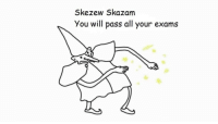Will, All, and You: Skezew Skazam  You will pass all your exams