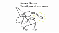 Good, Luck, and Will: Skezew Skazam  You will pass all your exams Good Luck To Everyone Taking Them