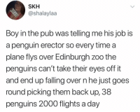 Funny, Jobs, and Penguin: SKH  @shalaylaa  Boy in the pub was telling me his job is  a penguin erector so every time a  plane flys over Edinburgh zoo the  penguins can't take their eyes off it  and end up falling over n he just goes  round picking them back up, 38  penguins 2000 flights a day Dream jobs do exist.