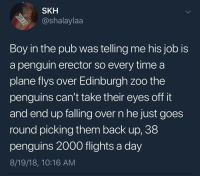 Penguin Erector: SKH  @shalaylaa  Boy in the pub was telling me his job is  a penguin erector so every time a  plane flys over Edinburgh zoo the  penguins can't take their eyes off it  and end up talling over n he just goes  round picking them back up, 38  penguins 2000 flights a day  8/19/18, 10:16 AM Penguin Erector
