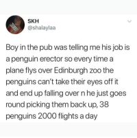 Memes, Okay, and Penguin: SKH  @shalaylaa  Boy in the pub was telling me his job is  a penguin erector so every time a  plane flys over Edinburgh zoo the  penguins can't take their eyes off it  and end up falling over n he just goes  round picking them back up, 38  penguins 2000 flights a day Okay I know I say this a lot but @MEMEZAR is seriously my favorite page rn 😭❤