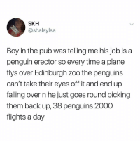 Ups, Penguin, and Penguins: SKH  @shalaylaa  Boy in the pub was telling me his job is a  penguin erector so every time a plane  flys over Edinburgh zoo the penguins  can't take their eyes off it and end up  falling over n he just goes round picking  them back up, 38 penguins 2000  flights a day Penguin pick ups.
