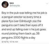 Penguin, Penguins, and Time: SKH  @shalaylaa  Boy in the pub was telling me his job is  a penguin erector so every time a  plane flys over Edinburgh zoo the  penguins can't take their eyes off it  and end up falling over n he just goes  round picking them back up, 38  penguins 2000 flights a day  8/19/18, 10:16 AM Penguin Erector