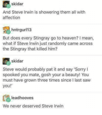 <p>Steve was just a ray of light.</p>: skidar  And Steve Irwin is showering them all with  affection  hntrl3  But does every Stingray go to heaven? I mean,  what if Steve Irwin just randomly came across  the Stingray that killed him?  skidar  Steve would probably pat it and say 'Sorry I  spooked you mate, gosh your a beauty! You  must have grown three times since I last saw  you!  leadhooves  We never deserved Steve Irwin <p>Steve was just a ray of light.</p>