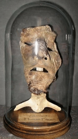 """The actual human-skin mask created by serial killer Ed Gein, that inspired """"Leatherface"""" in 1974 horror film 'The Texas Chain Saw Massacre.: -Skinned-  Human F The actual human-skin mask created by serial killer Ed Gein, that inspired """"Leatherface"""" in 1974 horror film 'The Texas Chain Saw Massacre."""