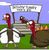For more funny animal memes check us out at Shicken Chit Again: SKINNY TURKEy  TEE's $10 For more funny animal memes check us out at Shicken Chit Again