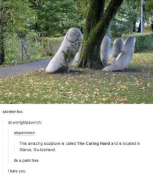 Funny, Switzerland, and Tree: skiretehfox  downrightpawnch:  sixpenceee  This amazing sculpture is called The Caring Hand and is located in  Glarus, Switzerland  ts a paim tree  I hate you Strange looking palm tree via /r/funny https://ift.tt/2RZBKNU