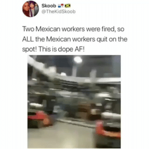 Thoughts? 🤔🤔 🔥 Follow Us 👉 @latinoswithattitude 🔥 latinosbelike latinasbelike latinoproblems mexicansbelike mexican mexicanproblems hispanicsbelike hispanic hispanicproblems latina latinas latino latinos hispanicsbelike: Skoob  @TheKidSkoob  Two Mexican workers were fired, so  ALL the Mexican workers quit on the  spot! This is dope AF! Thoughts? 🤔🤔 🔥 Follow Us 👉 @latinoswithattitude 🔥 latinosbelike latinasbelike latinoproblems mexicansbelike mexican mexicanproblems hispanicsbelike hispanic hispanicproblems latina latinas latino latinos hispanicsbelike