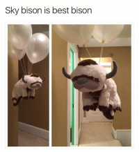 Memes, Best, and 🤖: Sky bison is best bison Yip Yip