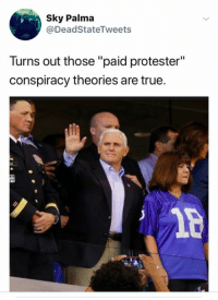 "True, Conspiracy, and Sky: Sky Palma  @DeadStateTweets  Turns out those ""paid protester""  conspiracy theories are true.  1p (S)"