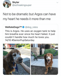 <3: Skylar  @sofreakingsuper  Not to be dramatic but Argos can have  my heart he needs it more than me  WeRateDogsTM @dog_rates  This is Argos. He uses an oxygen tank to help  him breathe ever since his heart failed. It just  couldn't handle how much he loves you  1410 <3