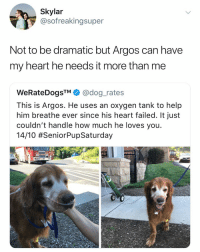 (@Weratedogs) I would die for u Argos: Skylar  @sofreakingsuper  Not to be dramatic but Argos can have  my heart he needs it more than me  WeRateDogsTM@dog_rates  This is Argos. He uses an oxygen tank to help  him breathe ever since his heart failed. It just  couldn't handle how much he loves you  1410 (@Weratedogs) I would die for u Argos