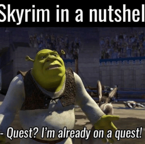 Good old Skyrim by _king_axel MORE MEMES: Skyrim in a nutshel  Quest? l'm already on a quest! Good old Skyrim by _king_axel MORE MEMES