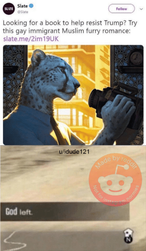 Another Red Pill from my Boys over at /r/dankmemes: Slate  @Slate  SLATE  Looking for a book to help resist Trump? Try  this gay immigrant Muslim furry romance:  slate.me/2im19UK  u/idude 121  e by re  agram  God left Another Red Pill from my Boys over at /r/dankmemes