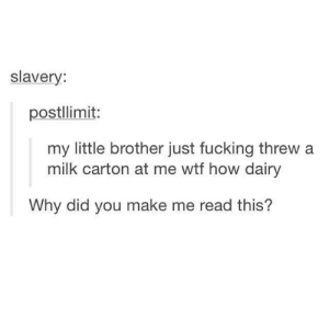 Thrown milk: slavery:  postllimit:  my little brother just fucking threw a  milk carton at me wtf how dairy  Why did you make me read this? Thrown milk