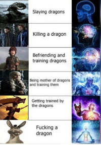 slaying: Slaying dragons  Killing a dragon  Befriending and  training dragons  Being mother of dragons  and training them  Getting trained by  the dragons  Fucking a  dragon