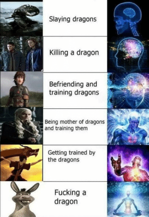 Normie shit  : Slaying dragons  Killing a dragon  Befriending and  training dragons  Being mother of dragons  and training them  Getting trained by  the dragons  Fucking a  dragon   Normie shit
