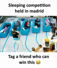 Twitter: BLB247 Snapchat : BELIKEBRO.COM belikebro sarcasm meme Follow @be.like.bro: Sleeping competition  held in madrid  sle  staff  Tag a friend who can  win this Twitter: BLB247 Snapchat : BELIKEBRO.COM belikebro sarcasm meme Follow @be.like.bro