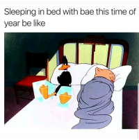 Bae, Be Like, and Latinos: Sleeping in bed with bae this time of  year be like Yess 😁😁😁😂😂 🔥 Follow Us 👉 @latinoswithattitude 🔥 latinosbelike latinasbelike latinoproblems mexicansbelike mexican mexicanproblems hispanicsbelike hispanic hispanicproblems latina latinas latino latinos hispanicsbelike