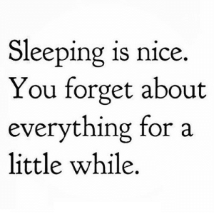 Sleeping, Nice, and Net: Sleeping is nice.  You forget about  everything for a  little while https://iglovequotes.net/