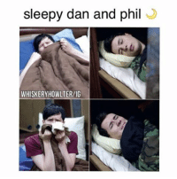 If you spam me with likes I'll spam you back :): sleepy dan and phil  WHISKERYHOWLTER/IG If you spam me with likes I'll spam you back :)