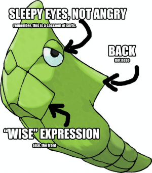 """Metapod Harden Memes: SLEEPY EYES,NOT ANGRY  remember, this is a  caccoon of sorts.  BACK  mot nose  """"WISEEXPRESSION  also, the front Metapod Harden Memes"""