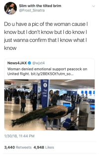 Blackpeopletwitter, Flight, and Peacock: Slim with the tilted brim  @Frost_Sinatra  Do u have a pic of the woman cause l  know but I don't know but I do know l  just wanna confirm that I know what l  know  News4JAX @wjxt4  Woman denied emotional support peacock on  United flight. bit.ly/2BEK5Ot?utm so  Step  0  Tag  your  bag  1/30/18, 11:44 PM  3,440 Retweets 4,948 Likes <p>You know what I'm sayin? (via /r/BlackPeopleTwitter)</p>